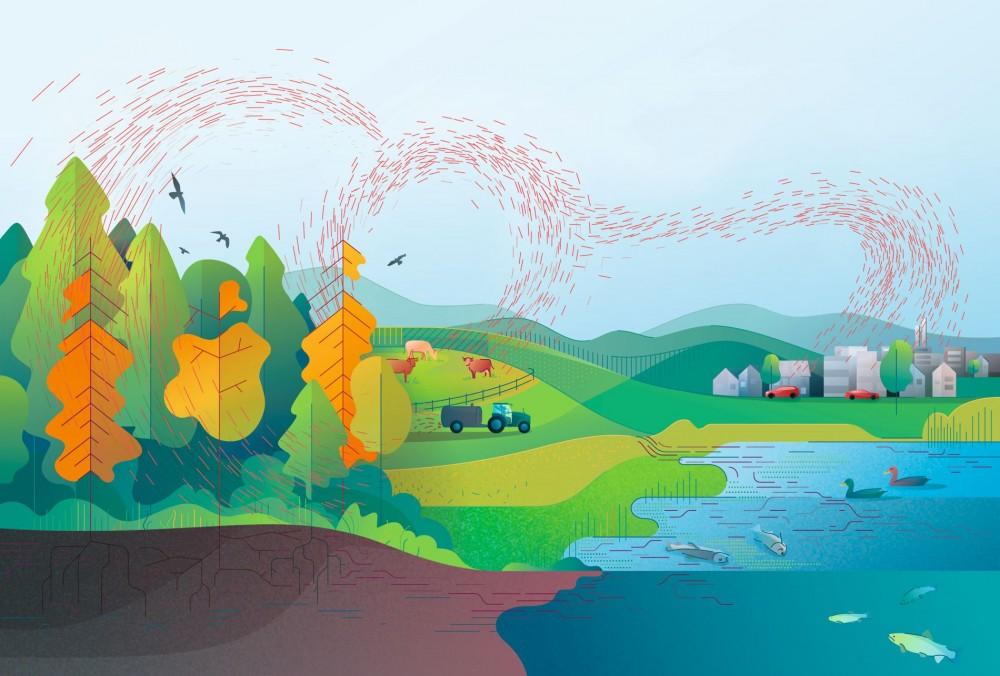 Übermässige Stickstoff- und Phosphoreinträge in die Umwelt schädigen Biodiversität, Wälder und Gewässer in der Schweiz massiv