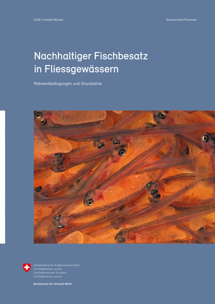 Nachhaltiger Fischbesatz in Fliessgewässern