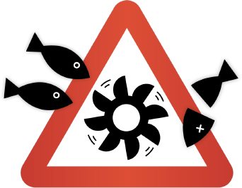 Protection des poissons � la place de turbines mortelles