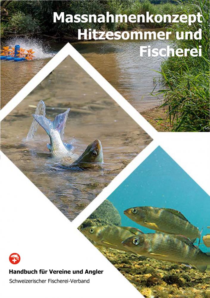 Fischer aufgepasst - die Temperaturen steigen!